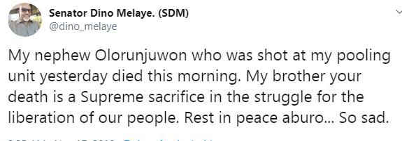Dino Melaye nephew shot dead