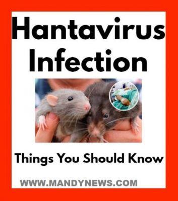 Hantavirus-Infection