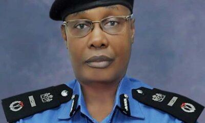 Meet Nigeria's New IG Of Police — Usman Baba Alkali (Biography)